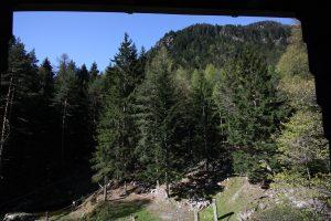 Haus_Schanz-Blick_aus_Leiterzimmer