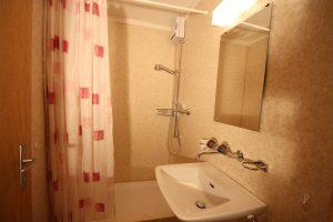 Haus_Schanz-Dusche